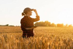 aposentadoria rural